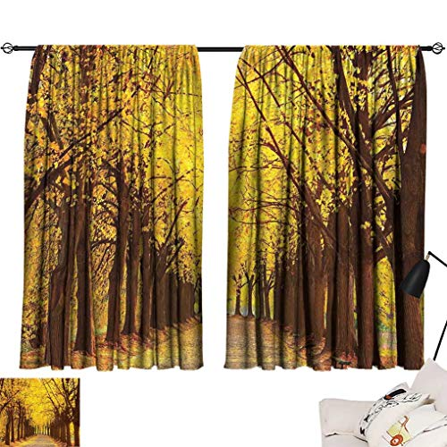 Linden Window Treatments - Landscape Curtains, Botanical Garden Autumn Leaves in The Fall Linden Alley in Kiev Ukraine Image Window Treatments for Bedroom 2 Panels Set, Each Panel 26