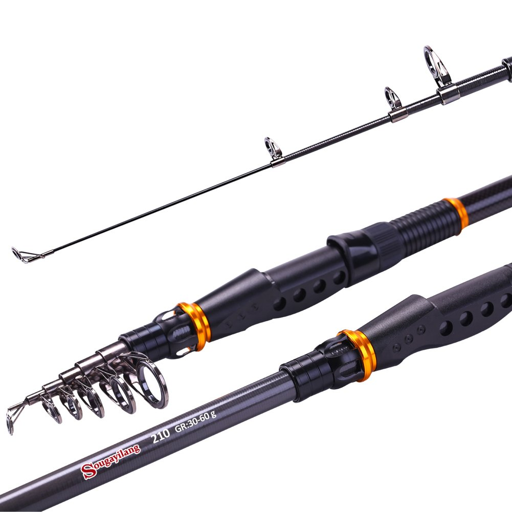 best portable fishing rod