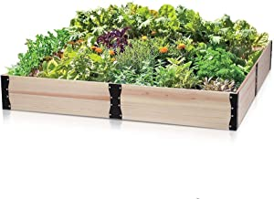 Taleco Gear Wooden Raised Garden Bed Planter, Outdoor Flower Bed Boxes Kit for Growing Fruit/Vegetable/Herb/Flower -Natural Wood Freely Combine The Shape and Size