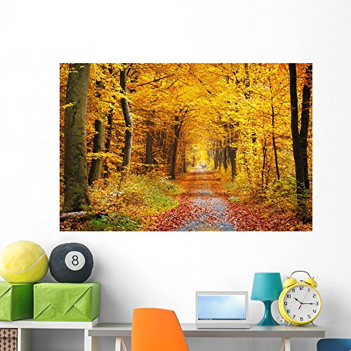 Autumn Forest Wall Mural by Wallmonkeys Peel and Stick Graphic (60 in W x 40 in H) WM363101