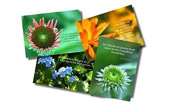 4er Set Genesungskarten Mit Spruchen Weisheiten Und Zitaten Blumen