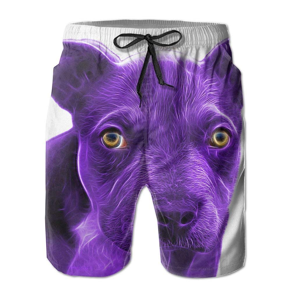 Purple Pit Bull Athletic Mens Shorts Beach Swim Trunk Summer