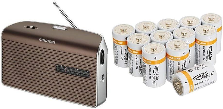 Grundig Music 60 Empfangsstarkes Radio Im Modernen Design Brown Silver Amazon Basics Batterien Alkali Typ D 12 Stück Audio Hifi