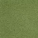 Soft Solids KIDply Grass Green Rectangle Kids Rug Size: 6' x 9'