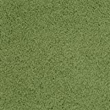 Carpets for Kids 5100.301 Soft Solids Kidply Rectangle Kids Rug Size: 6' x 9' 6' x 9' , 6' x 9' , Grass Green