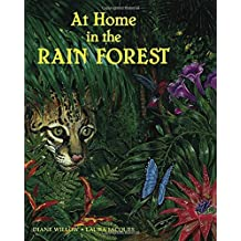 At Home In The Rainforest (Paperback)