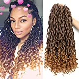 6Packs/Lot Wavy Goddess Faux Locs Crochet Synthetic Braiding Hair 18 inch Soft Curly Fauxlocs Havana Mambo Twist Hair Extensions Braids Dreadlocks 24Roots (18inch Natural Black Brown T1B/27)