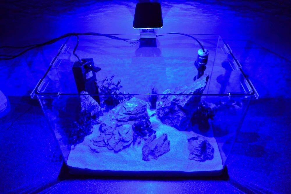 Wave caja Orion 45 Nano Acuario Completo Acuario Mini acuario + ...