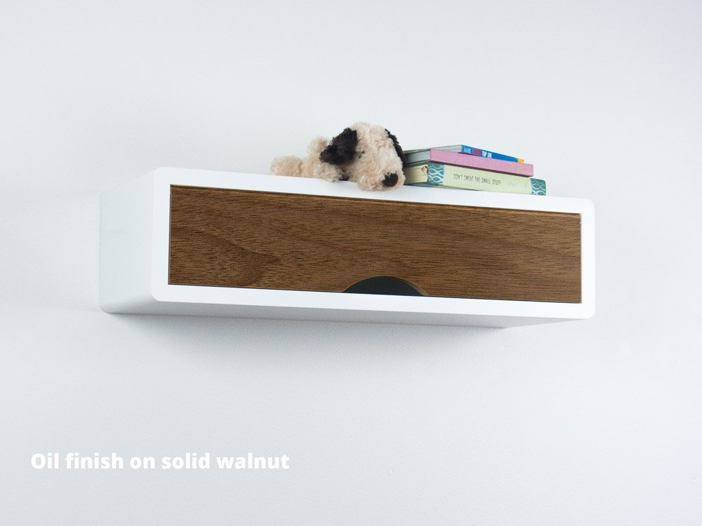 Slim Modern Floating Shelf with Door, Mid Century Modern Retro Style, Floating Cabinet
