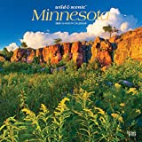 Minnesota Wild & Scenic 2020 12 x 12 Inch Monthly Square Wall Calendar, USA United States of America Midwest State Nature