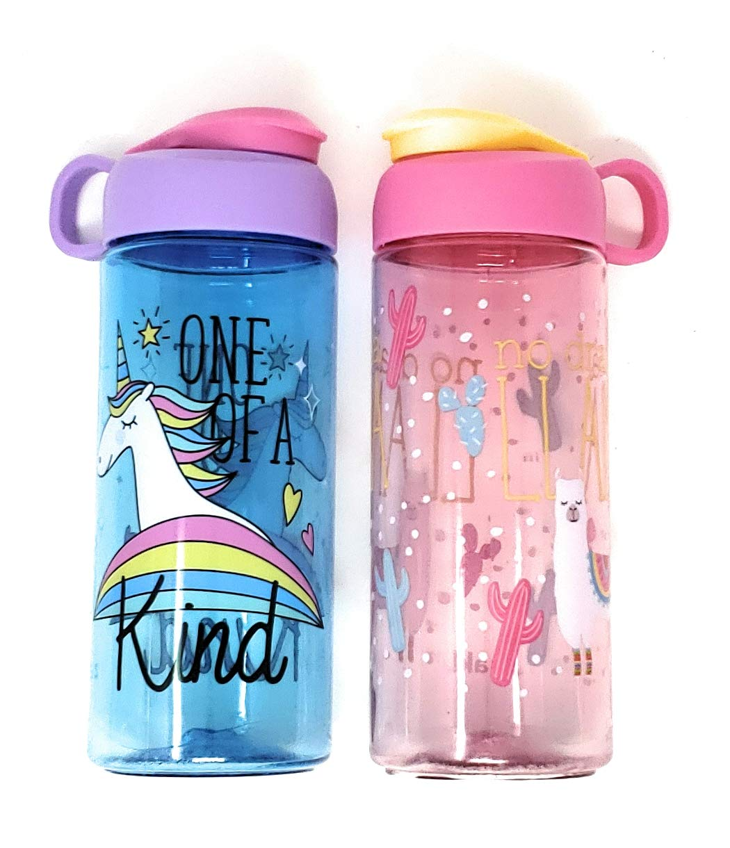 Zak Fun Youth Water Bottles 16.5 Ounce Plastic Bottle with Carrying Loop Built Into Lid