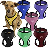 Oxgord Pet Control Harness for Dog & Cat Easy Soft Walking Collar, Medium, Hunter Green