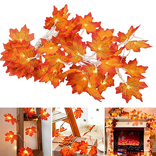EOOUT 2 Pack Thanksgiving Decorations, Each Pack 8.2ft / 20LED Fall Maple Leaves Light String - Battery Powered LED String Lights, Thanksgiving Gift