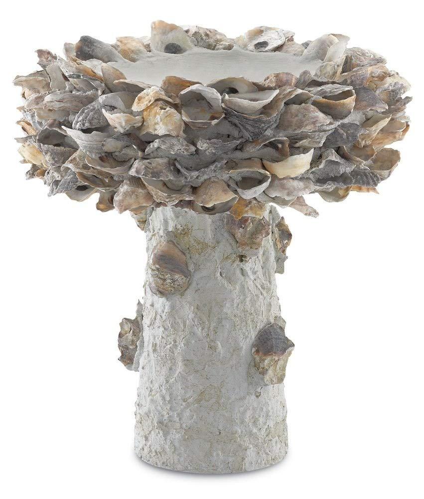 Currey & Company Home Oyster Shell Small Bird Bath by Currey and Company