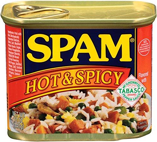 スパム (SPAM)