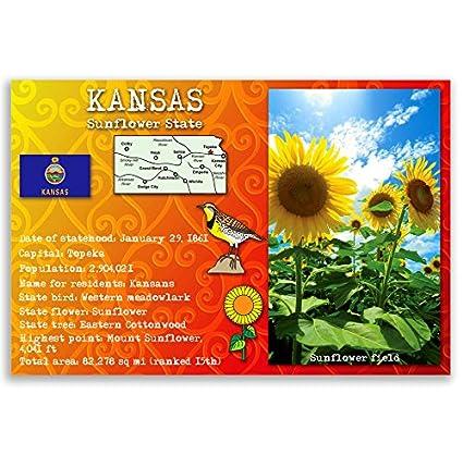 Amazon Kansas State Facts Postcard Set Of 20 Identical