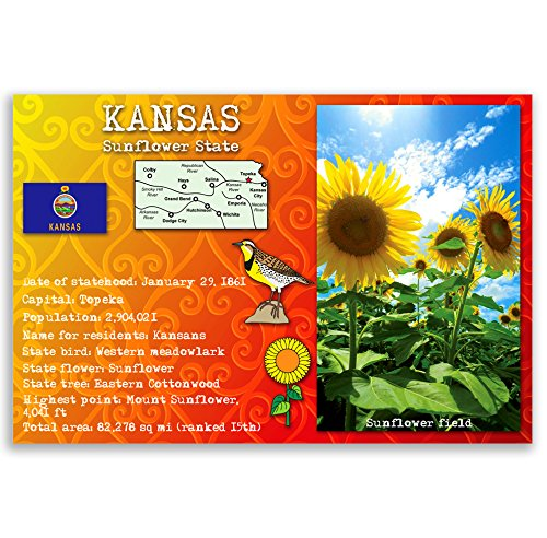 ostcard set of 20 identical postcards. Post cards with KS facts and state symbols. Made in USA. (Kansas Ks Postcard)