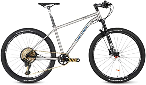 Bicicleta Montaña 27.5/29, SRAM-XX1-12 Velocidad, Freno de Disco de Aceite Shimano, Full Suspension, Marco de Acero de Titanio,29inch*17inch: Amazon.es: Deportes y aire libre