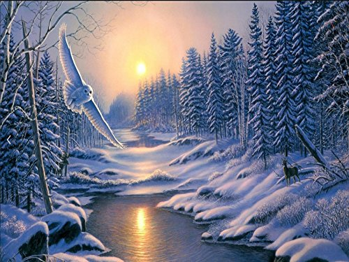 Diamond Painting Full Drill 5D DIY Rhinestone Embroidery Kit for Home Wall Decor Snow Scene 11.8115.75 inches