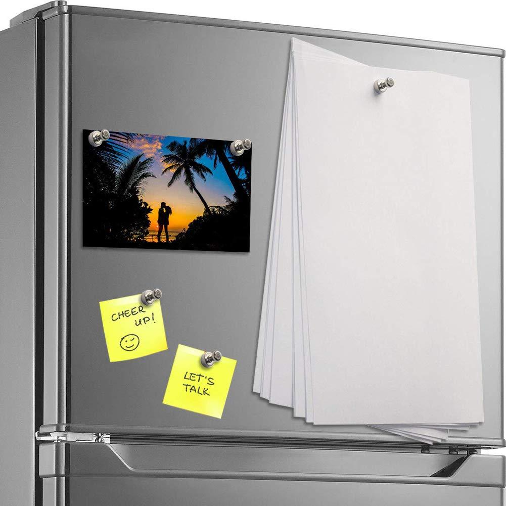 NEEGO Im/ánes Nevera Clip Refrigerador 10 Piezas Perfecto Imanes de Nevera Imanes de la Cocina Imanes de la Pizarra para la Escuela de la Oficina Casera Plata