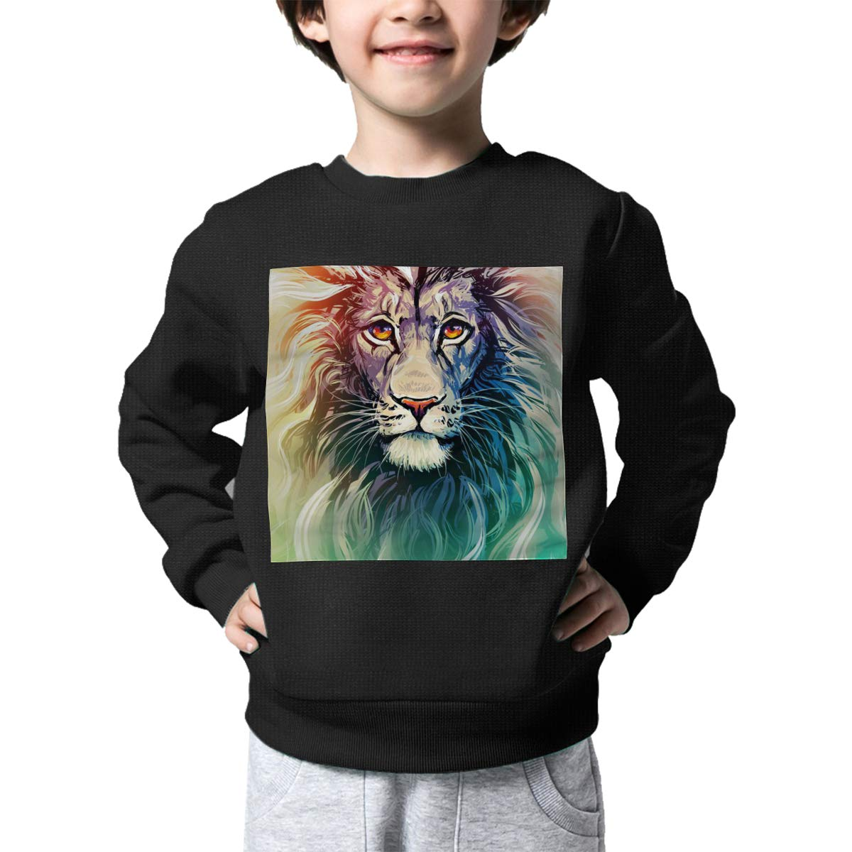 BaPaLa Color Lion Boys Pullover Sweater Funny Crew Neck Knitted Sweater for 2-6T