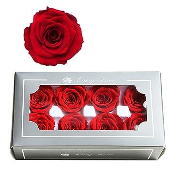 Fasff Coffret Cadeau Rose éternelle Pour Petite Amie Cadeau