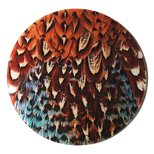 pheasant-plumage-design-glass-cheese-platter-by-charles-sainsbury-plaice-great-hunting-gift