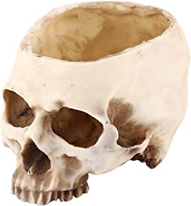 11.5cm Open Skeleton Skull Figurine Medium Bowl, Artificial Resin Skull Head Flower Pot Multifunctional Tabletop Storage Tank Replica Skeleton Model Home Bar Table Decor Ornament