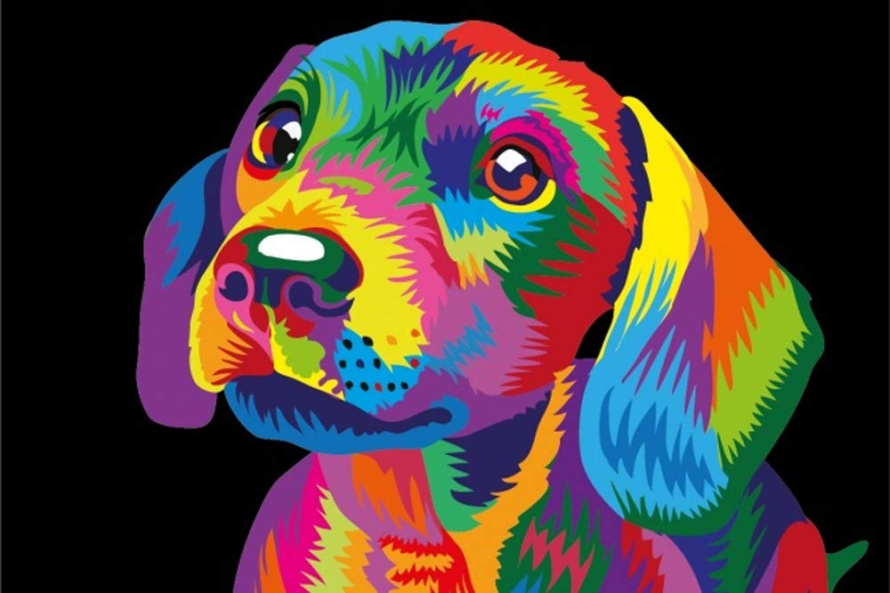 iFymei DIY Oil Painting Kit , Paint by Numbers for Adults & Kids & Beginner , 16 x 20 inch Canvas & Acrylic Paints - Colorful Cute Dog by iFymei