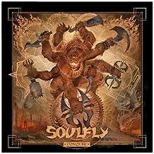 Conquer (CD/DVD)