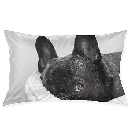 Amazoncom Jingclor 20x30 Pillow Covers Cute Black French Bulldog