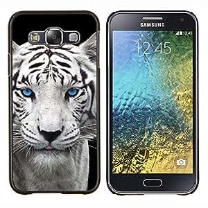 EJOOY---Cubierta de la caja de protección para la piel dura ** Samsung Galaxy E5 E500 ** --Snow Leopard Tiger perrito lindo Cub Ojos azules