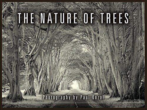 The Nature of Trees Boxed Notecards