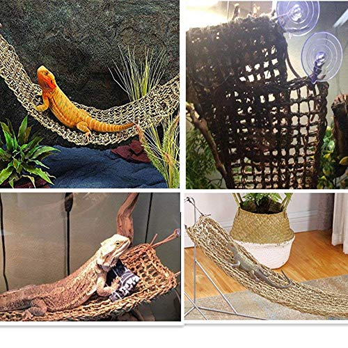 KHLZ US Reptile Hammock Lizard Lounger, 100% Natural Seagrass Fibers for Anoles, Bearded Dragons, Geckos, Iguanas, and Hermit Crabs ()