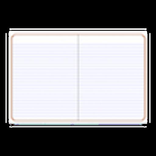 (Notebook)