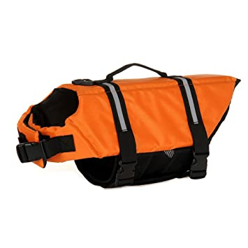 Chaleco salvavidas para perro, cinturón ajustable, chaleco reflectante para mascotas, chaleco salvavidas,