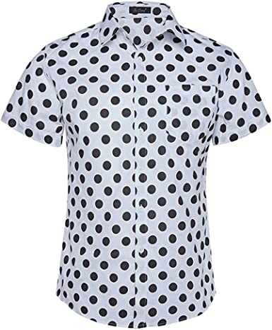 NANSHIZSCS Camisa de hombre Camisa De Hombre con Estampado De Lunares Más Tamaño Camisa Casual De Manga Corta Camisa De Fiesta De Playa: Amazon.es: Ropa y accesorios