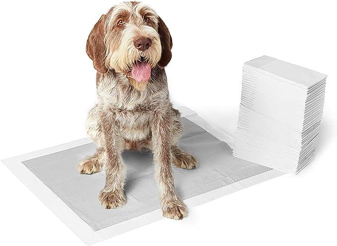 AmazonBasics - Empapadores de adiestramiento para perros, carbón, extragrande, 50 unidades