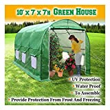 Woworld Greenhouse 10'x7'x7' Portable Walk in Garden Larger Hot House Plants Live Foldable 6...