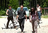 The Walking Dead Tv Print (11.7 X 8.3) Norman Reedus Andrew Lincoln Danai Gurira