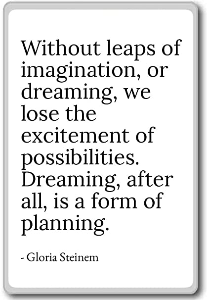 Amazon.com: Without leaps of imagination, or dreaming, w ...