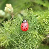 Cosmos Mini Wood Ladybugs Shaped Stickers Miniature Dollhouse Bonsai Fairy Garden Landscape Ladybugs Decor, 100 Pieces