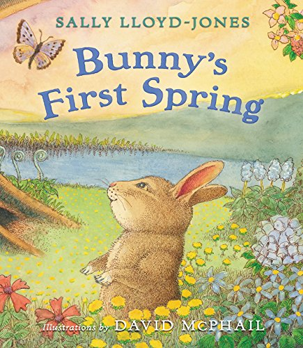 Download Bunny's First Spring pdf