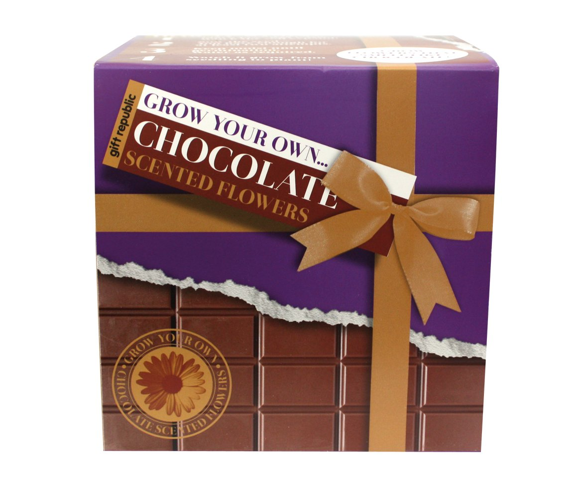 Gift Republic Grow Your Own Chocolate Flowers Gift Republic Ltd GR320007