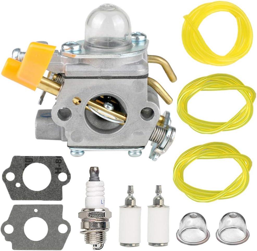 Carb Tool Tune up Kit for Homelite Ryobi RY09800 RY28021 RY28041 RY28065 UT32601 UT32601A UT32605 UT32651 UT32651A UT32655 26cc Strting Trimmer Brushcutter HIPA 308054043 Carburetor