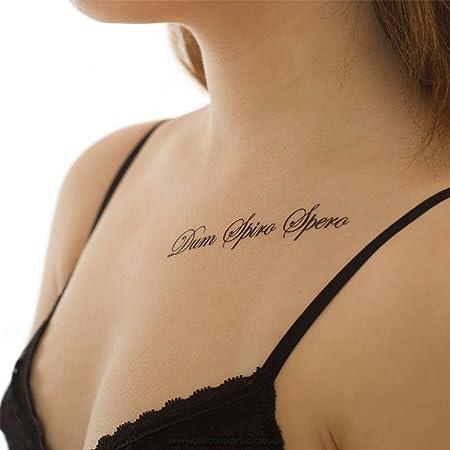 5 X Dum Spiro Spero Tattoo Latein Spruch Schriftzug In Schwarz 5