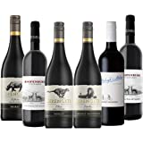 高コスパ&果実味たっぷり ボディしっかりで注目の南アフリカ赤ワイン6本セット(赤750mlx6) [南アフリカ/Amazon.co.jp限定/winery direct]