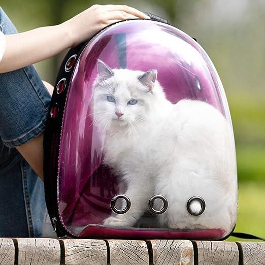 Lllffflll Portador for Gatos, Portador for Perros: portátil Transparente Visible pequeña Mochila for Mascotas Caja de Arena for Gatos Portador for Perros 36 * 25 * 44 cm (Color : Purple): Amazon.es: Hogar