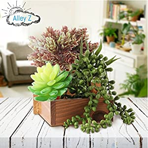 Artificial Succulent Plants Realistic Look 5 Pack 3