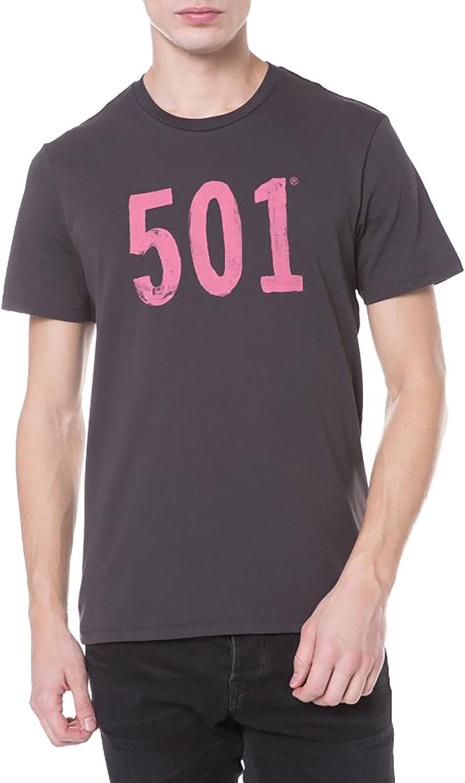 Camiseta Levis Graphic Setin Grey 2XL Gris: Amazon.es: Ropa y accesorios